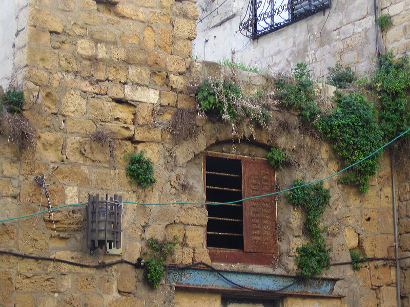 Acre - عكا : Cluster of old Palestinian houses in the old city of Akka #2
