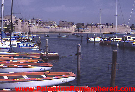 Acre - عكا : General view of Acre's port
