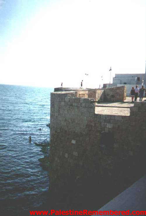 Acre - عكا : Acre old city sea wall