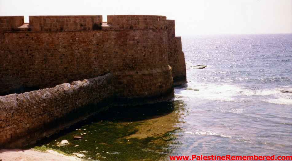 Acre - عكا : Acre's western sea walls 1