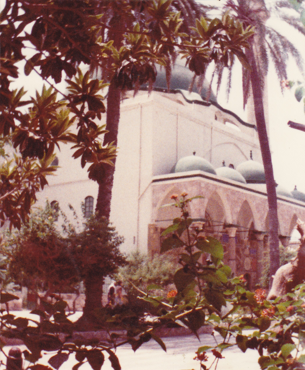 Acre - عكا :   Al-Jazzar mosque from its courtyard on Monday 1/8/1983