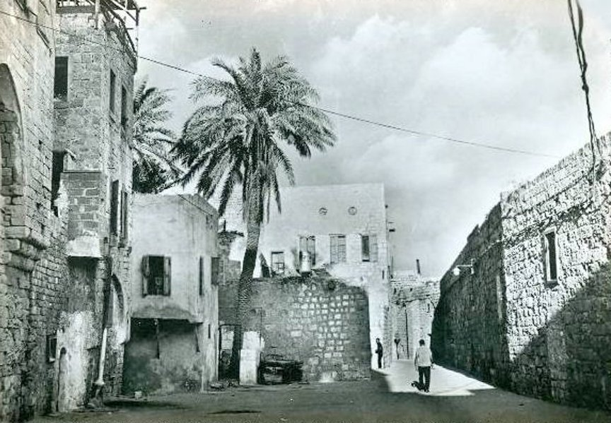 Acre - عكا : ACRE - Mid 20th c.