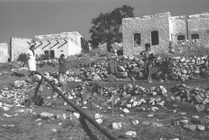 Dayr al-Qasi&nbsp;-&nbsp;&#1583;&#1610;&#1585; &#1575;&#1604;&#1602;&#1575;&#1587;&#1610;&nbsp;: New Jewish Settlers Enjoying The <b>New Loot</b> In Dayr al-Qasi, 1949