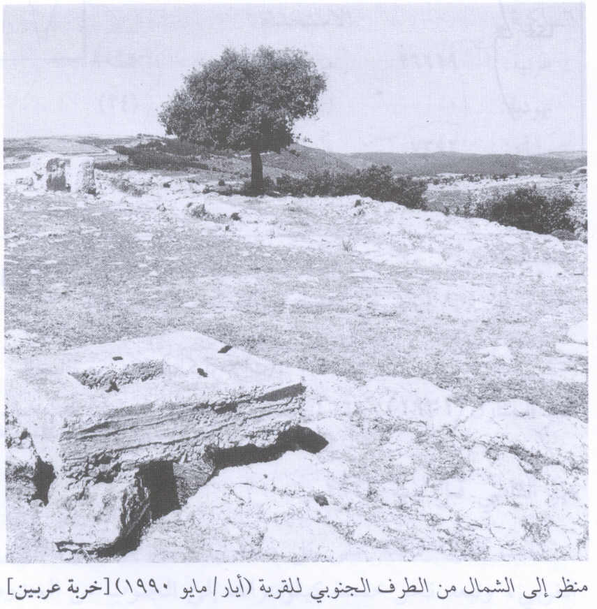 'Iribbin, Khirbat - خربة عربين : Village Site In 1990