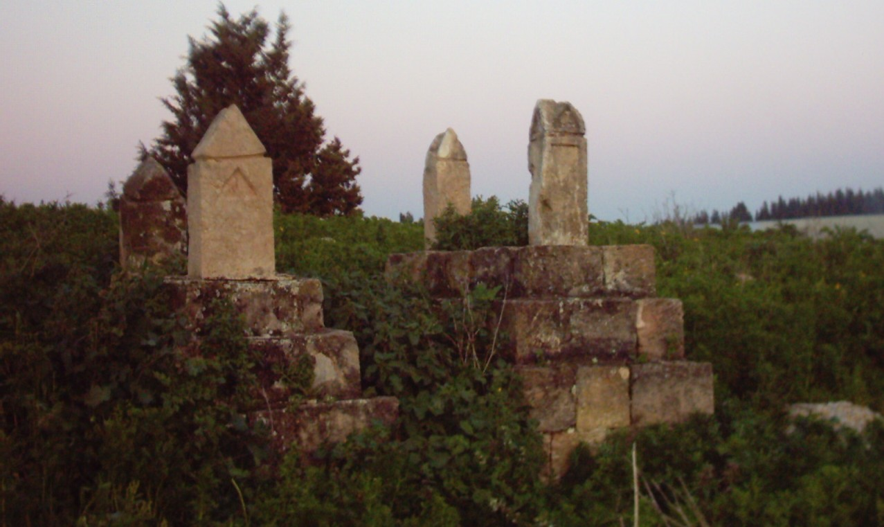 Mi'ar - ميعار : Village Cemetery In 2003