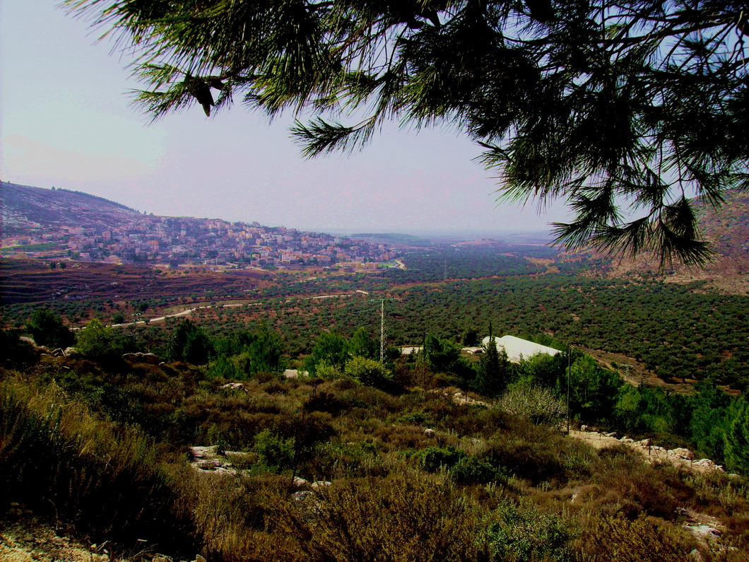 Sha'ab - شعب : View of Shaab