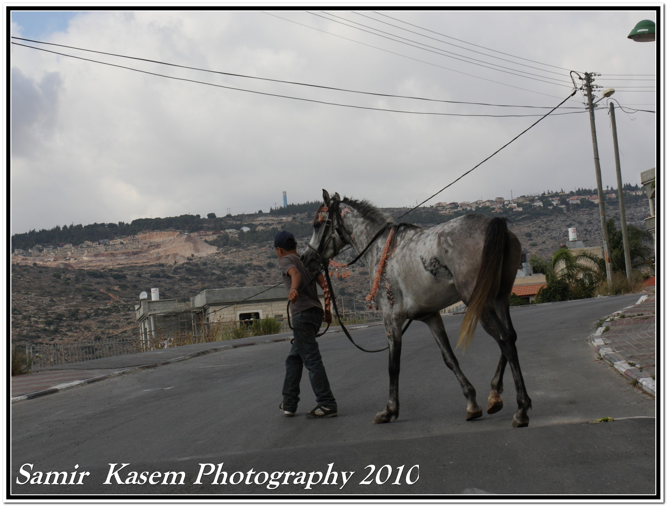 Sha'ab - شعب : A horse is comforted by a boy in Shaab town. This horse was set on fire in this town few weeks before..