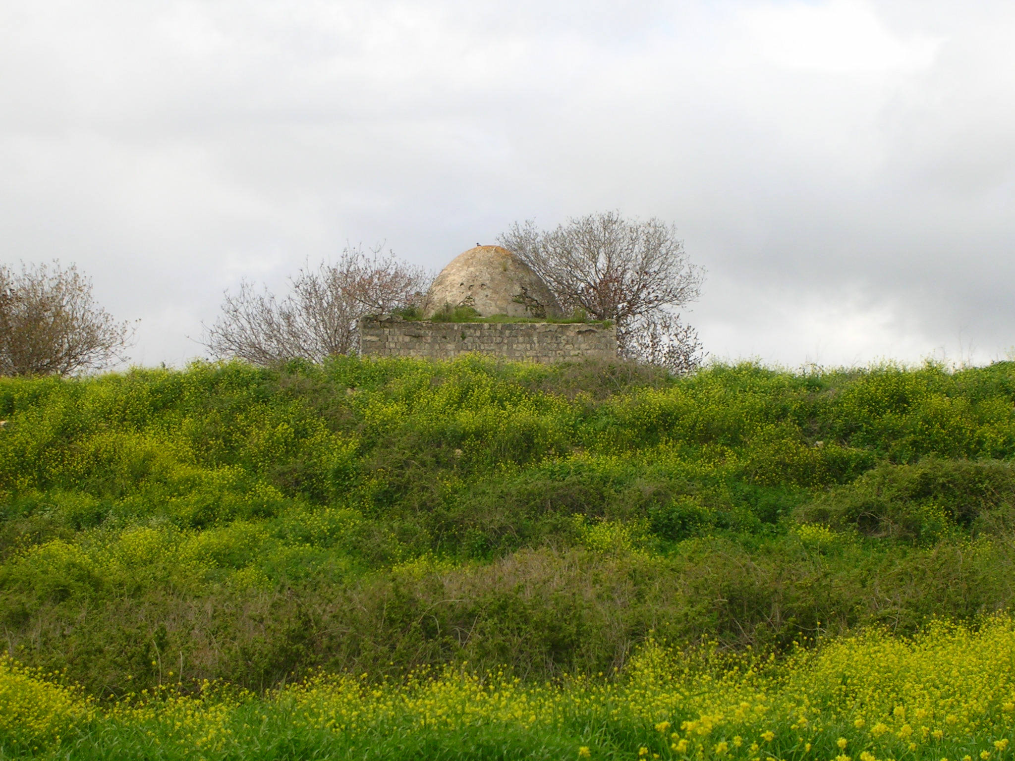Tarbikha - تربيخا : The mosque from Tarbikha