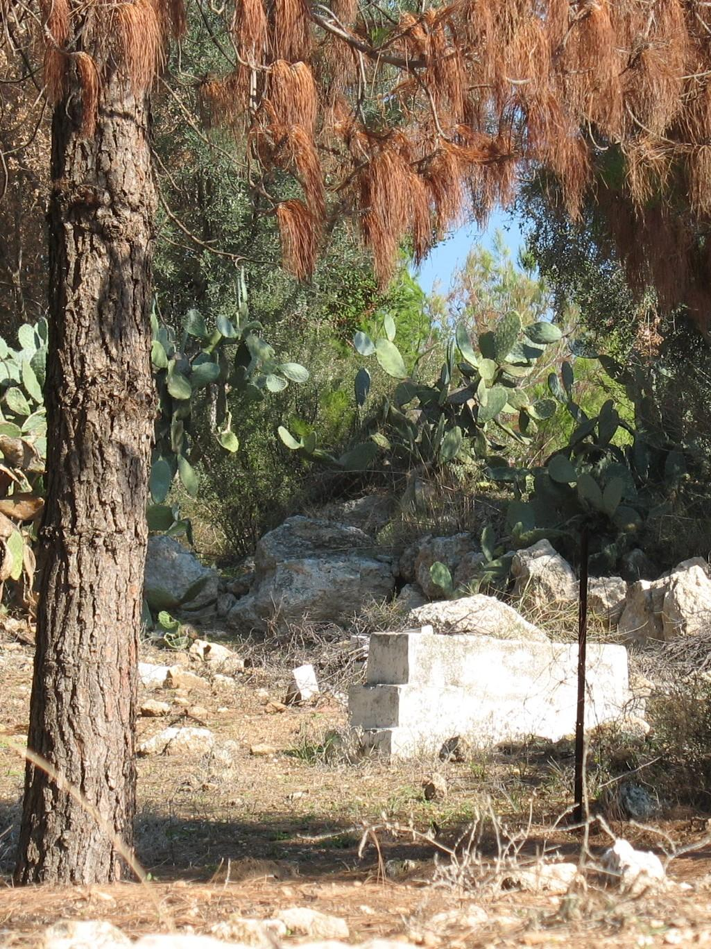 al-Ghabisiyya - الغابسية : The village's cemetery