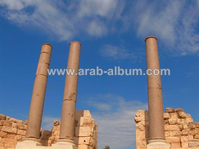 صور من فلسطين Picture22151