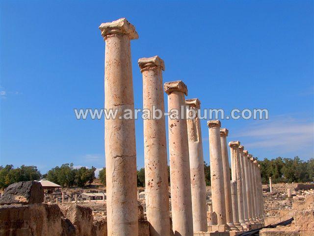 صور من فلسطين Picture22153