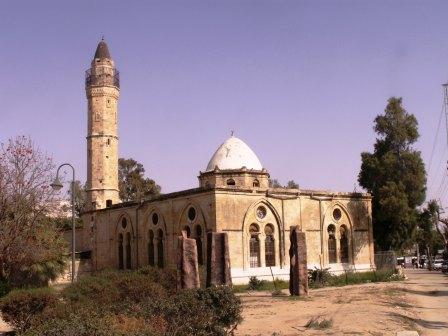 صور من فلسطين Picture17881