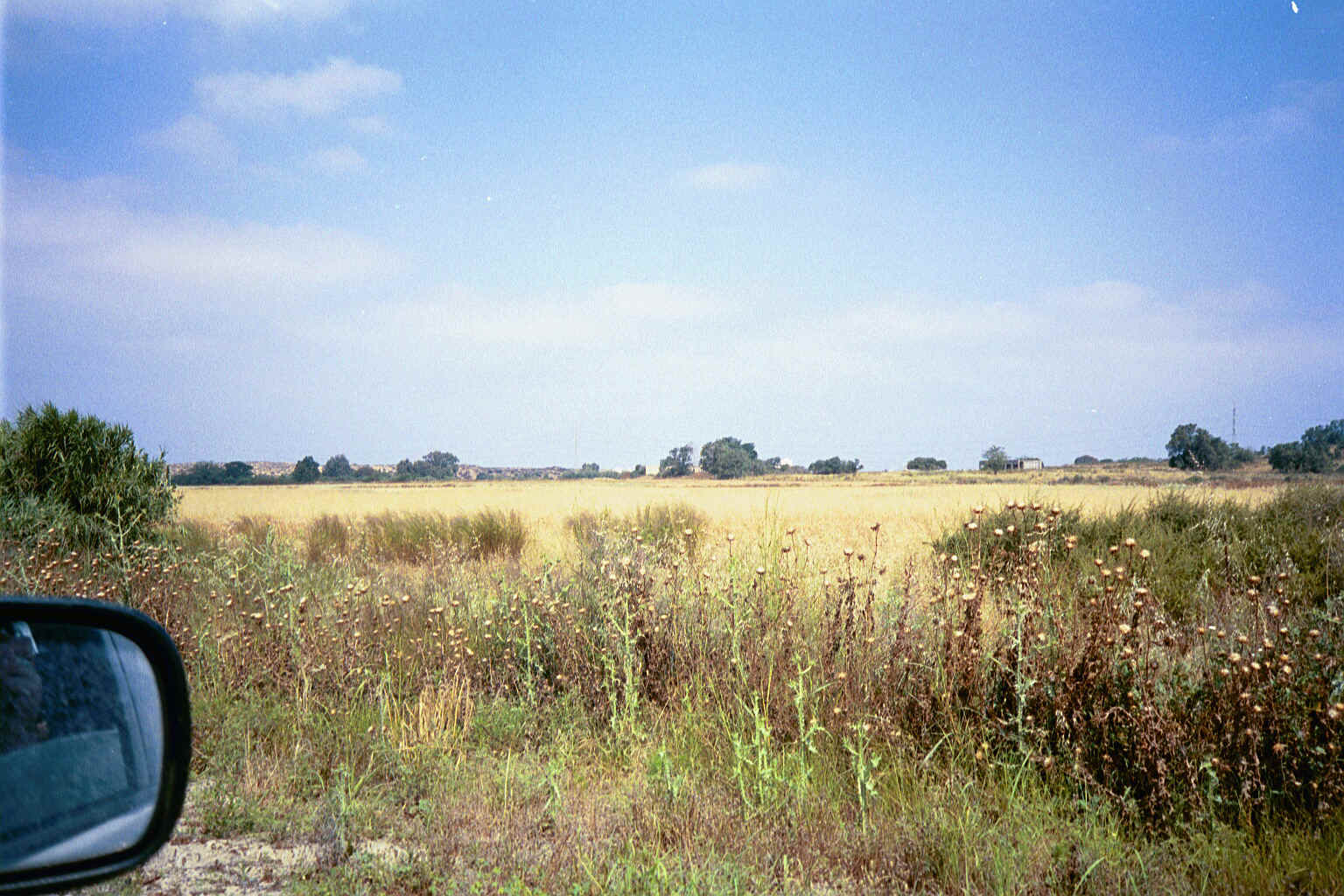 General View of Isdud's lands and single remaining house-May-2002
