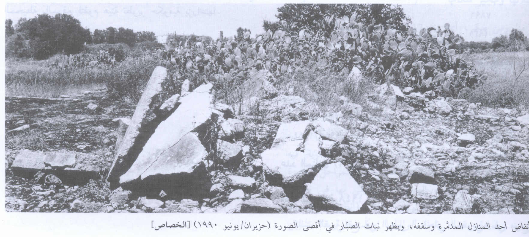 al-Khisas - خربة الخِصاص : Second View Of The Destroyed Village And It's Rubble In 1990