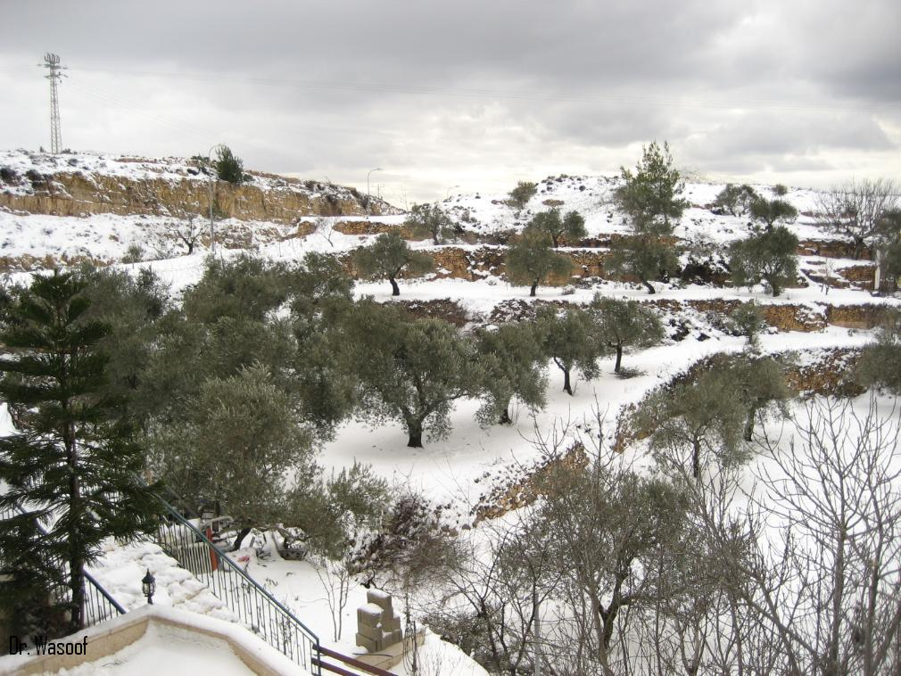 Battir - بتّير : Winter 30/31 January 2008 - Snow Falling 2