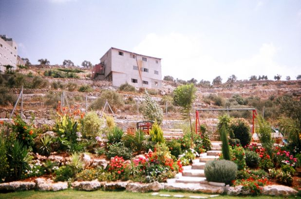 Battir - بتّير : Battir garden... from abubutma