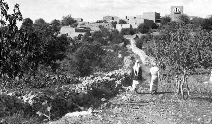 Bayt Sira -  بيت سيرا : The Village of Beit Sira - This picture was identified ( by mistake) as another village called Imwas. I have been advised that this picture belongs to village of Bait Sira.