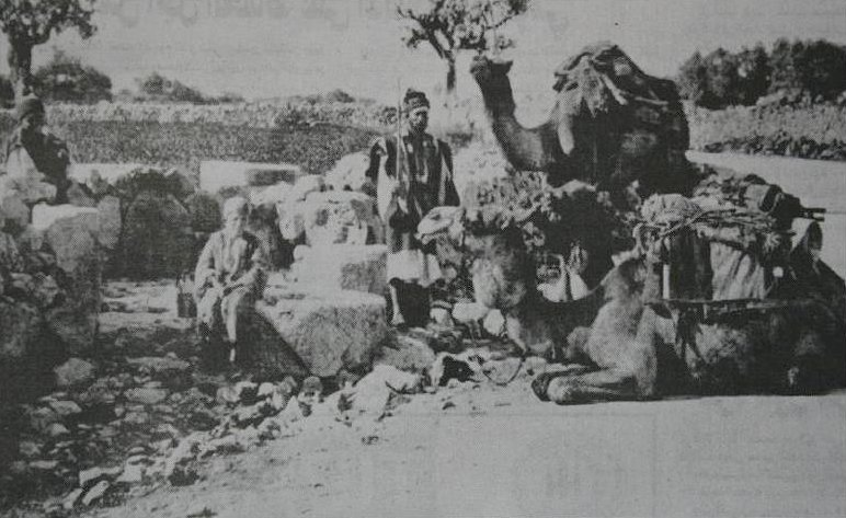 Bethlehem - بيت لحم : Mar Elias, north of Bethlehem, 1893.