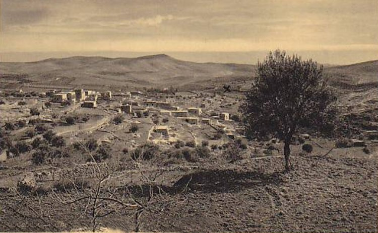 Bethlehem - بيت لحم : PALESTINE - Bethlehem, 1890s (early 20th c.) 29 The Shepard's Field near Bethlehem