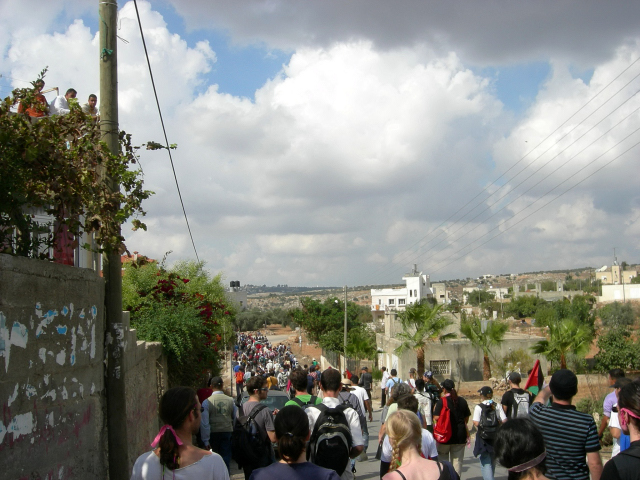 Bil'in - بلعين : During a protest against the apartheid wall #3