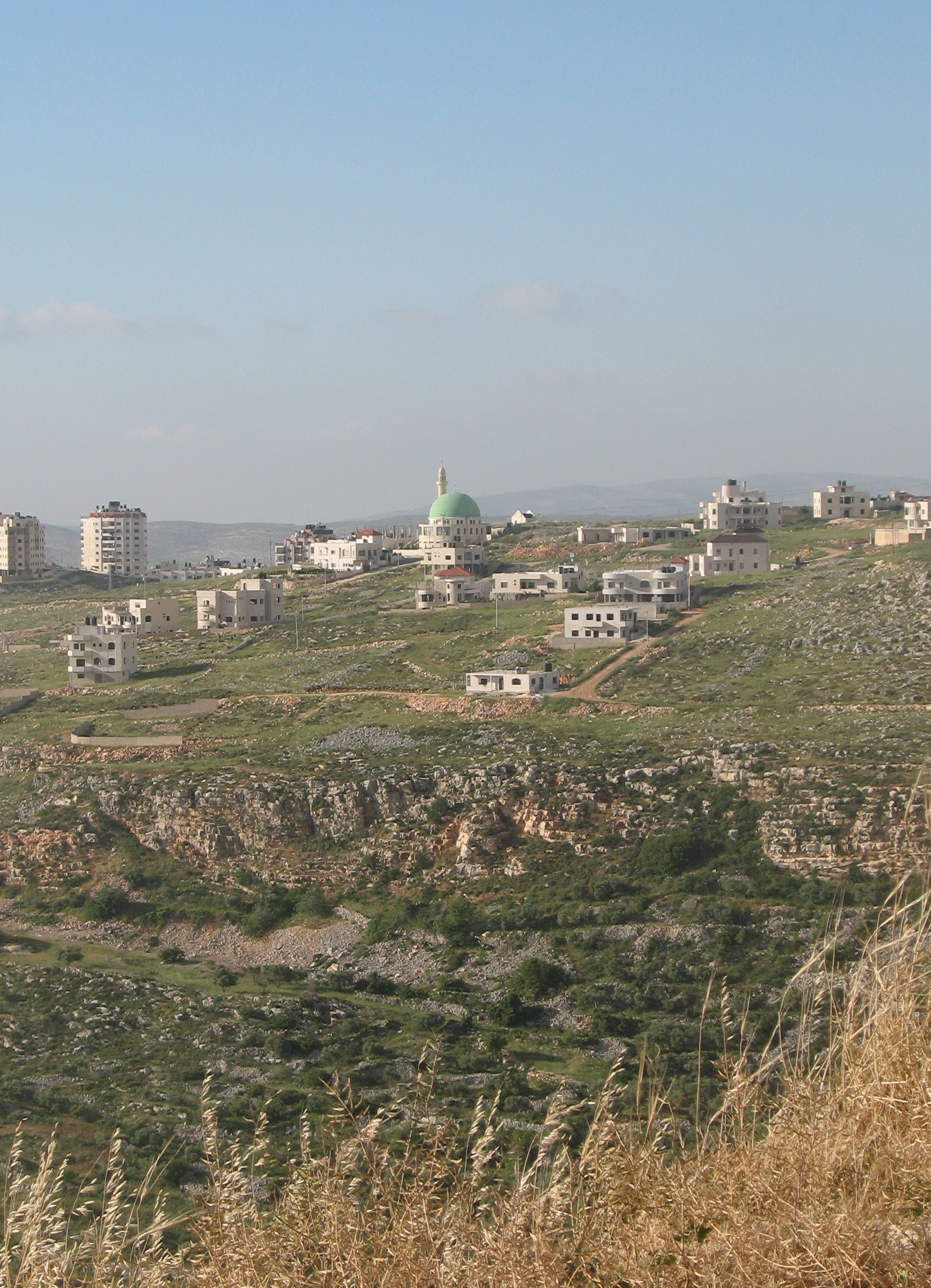Burin - بورين : You can see Nablus from Burin.