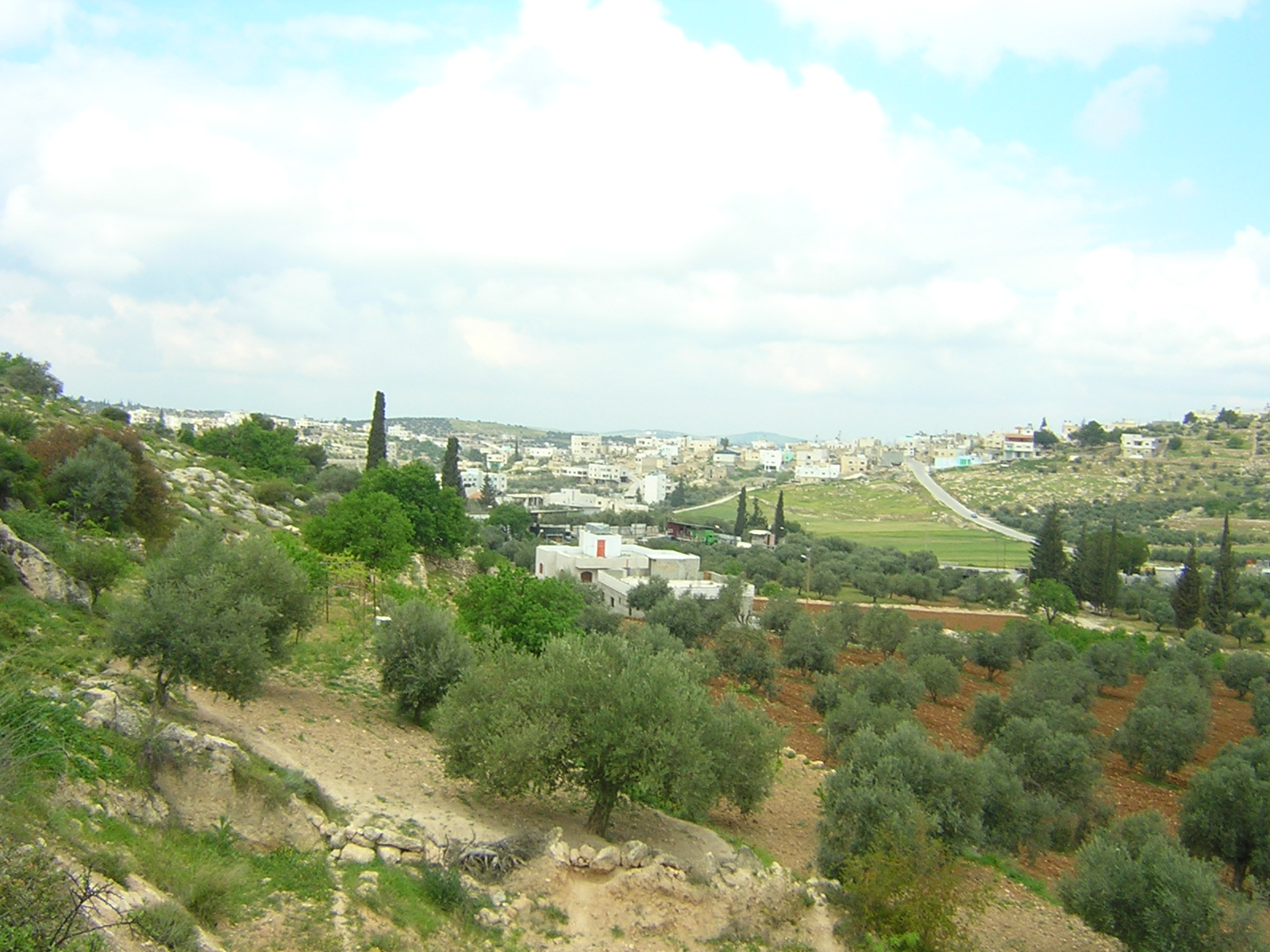 Dayr Samit - دير سامت : General view in the spring (from Wadgora)