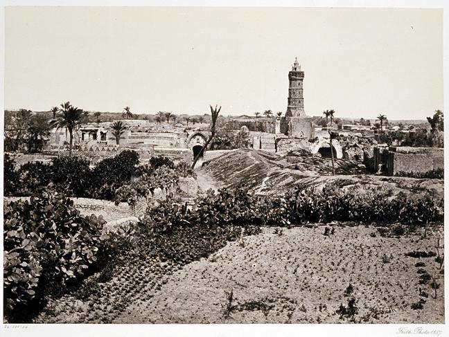 ���� ����� ������ Gaza-11204.jpg