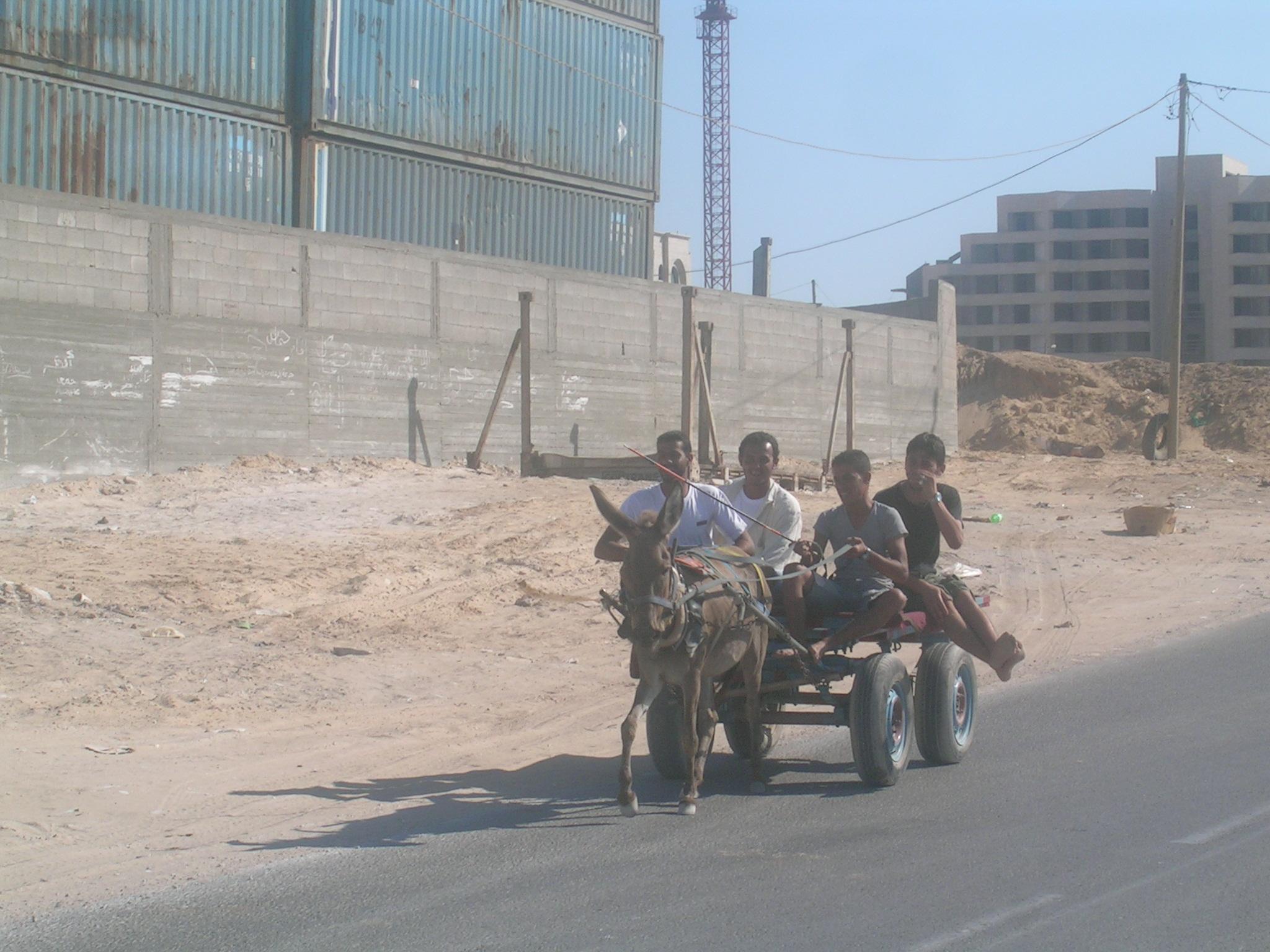 ���� ����� ������ Gaza-11216.jpg