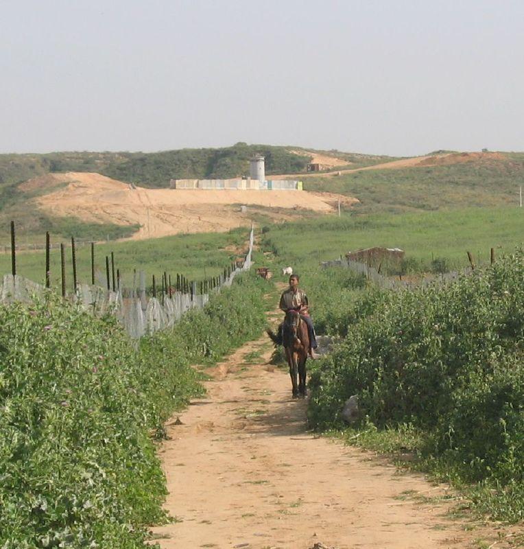 ���� ����� ������ Gaza-11246.jpg