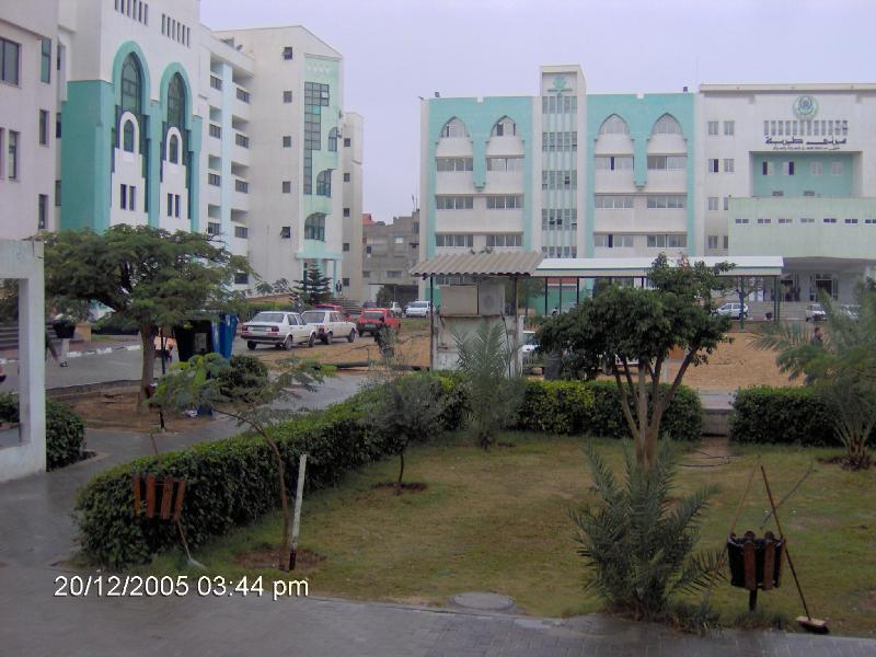 ���� ����� ������ Gaza-11560.jpg