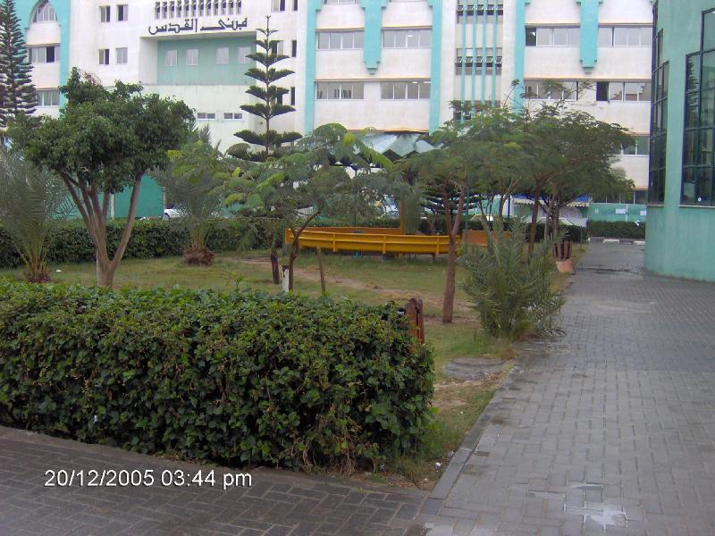 ���� ����� ������ Gaza-11561.jpg