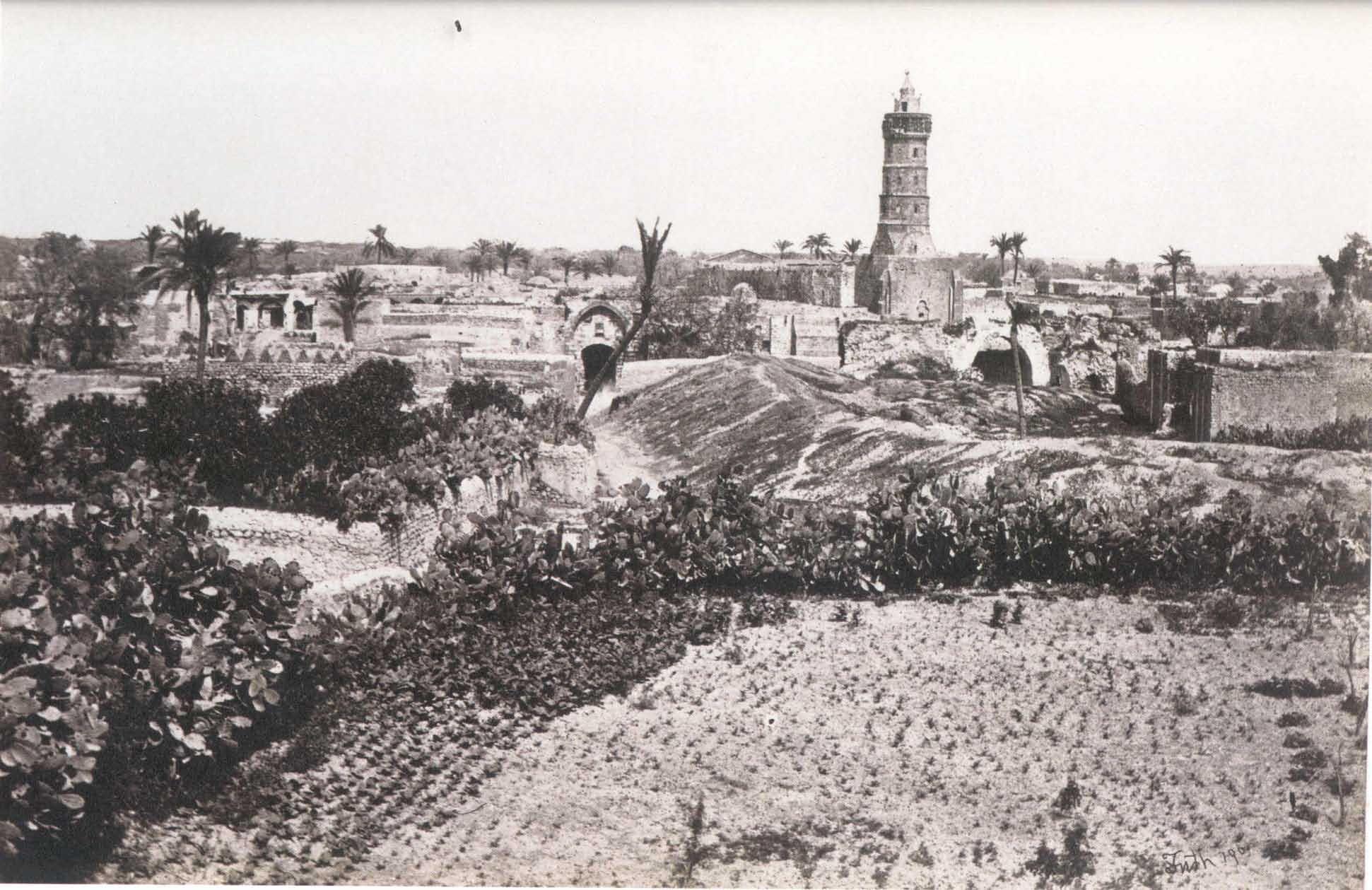 ���� ����� ������ Gaza-12337.jpg