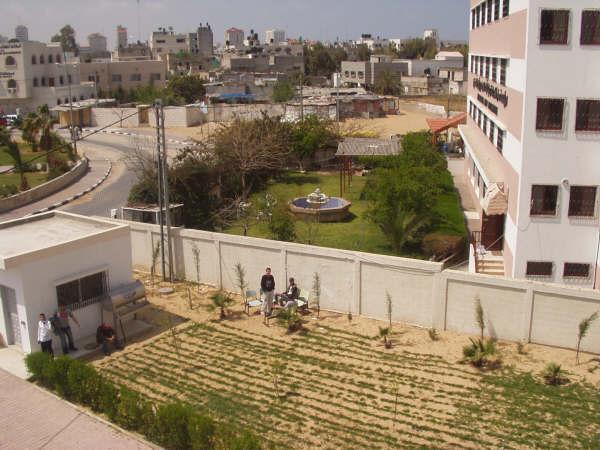 ���� ����� ������ Gaza-12698.jpg