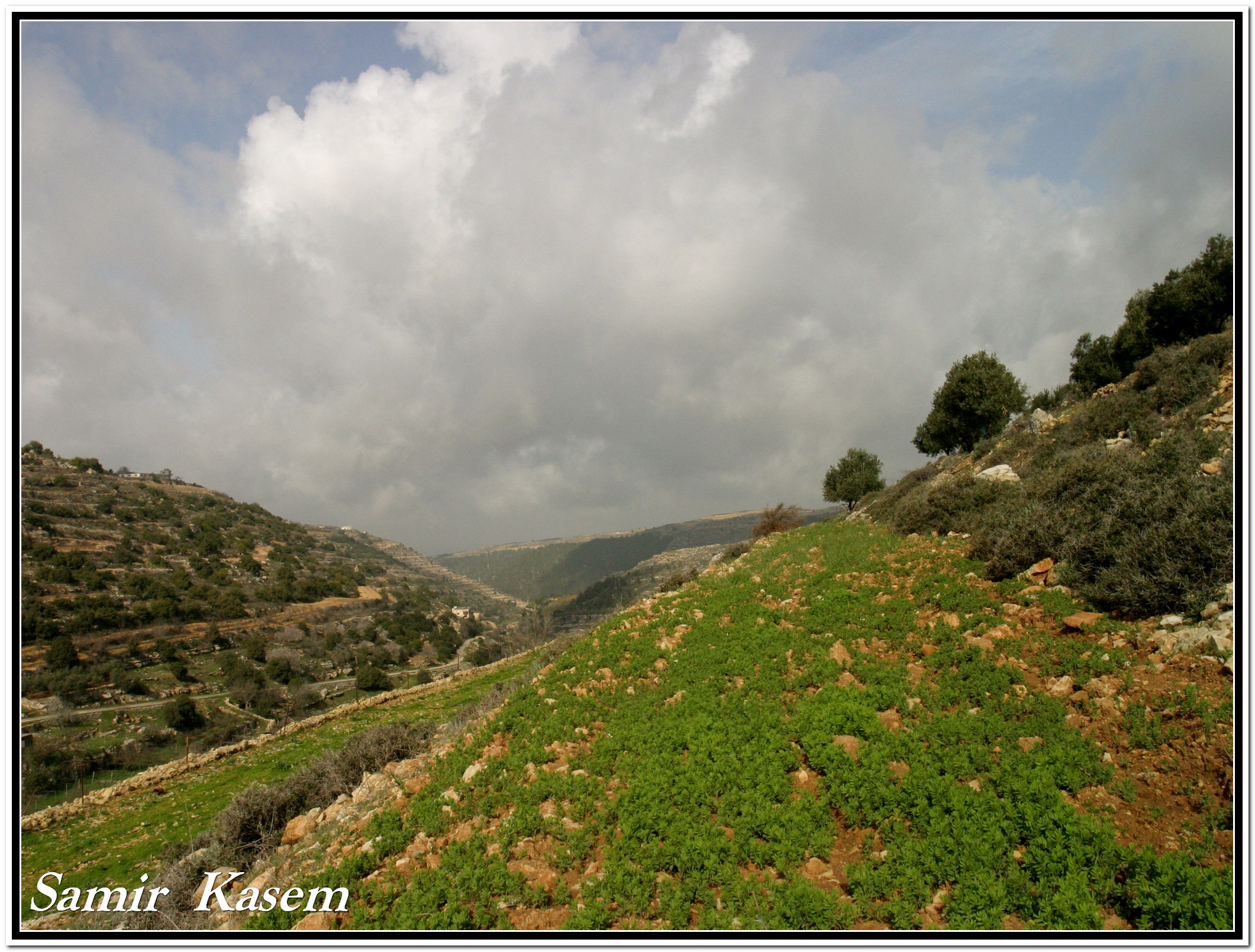 Halhul - حلحول : another veiw of wadi haska