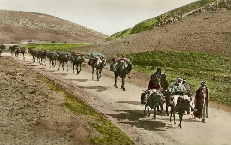 Jericho - أريحا : JERICHO - Late 19th, early 20th c. 1 - The road to Jericho