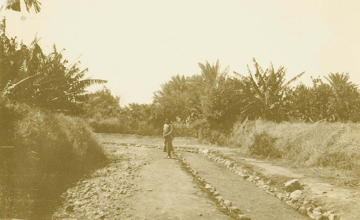 Jericho - أريحا : JERICHO - Late 19th, early 21th c. 21 - One of Jericho's irrigation canals, circa 1926 (Per Reem Ackall)