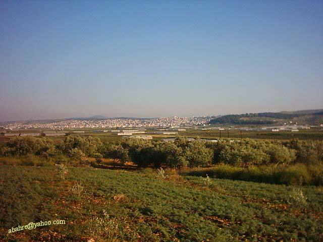 مدينة الجنائن الفلسطينية (جنـــين)مشاركتي في المسابقة