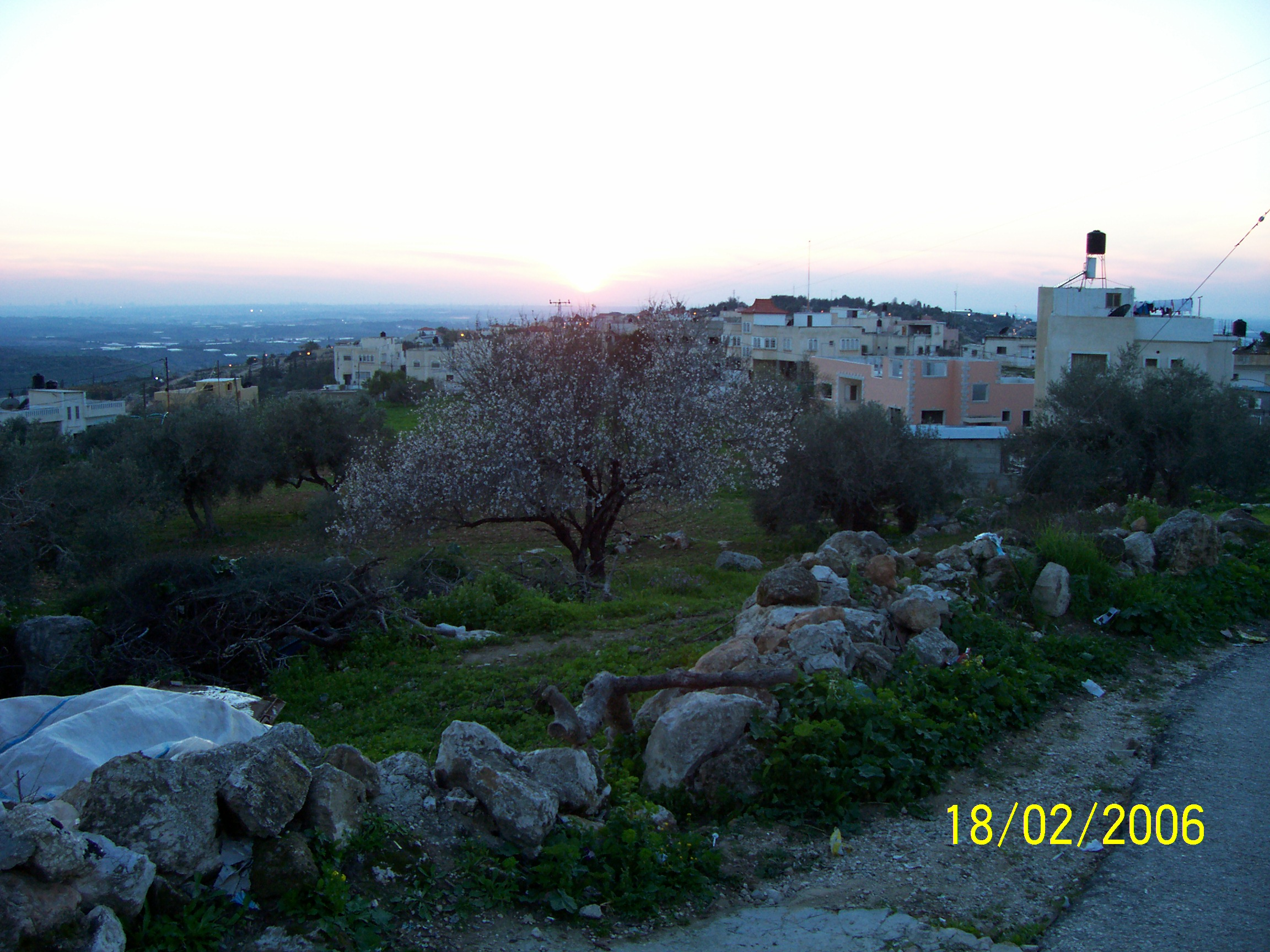 Kafr Sur - كفر صور : View of the western side