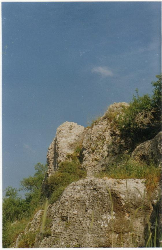 Kafr Sur - كفر صور : This big rock is located south of the school in the northwest of Kafr Sur .