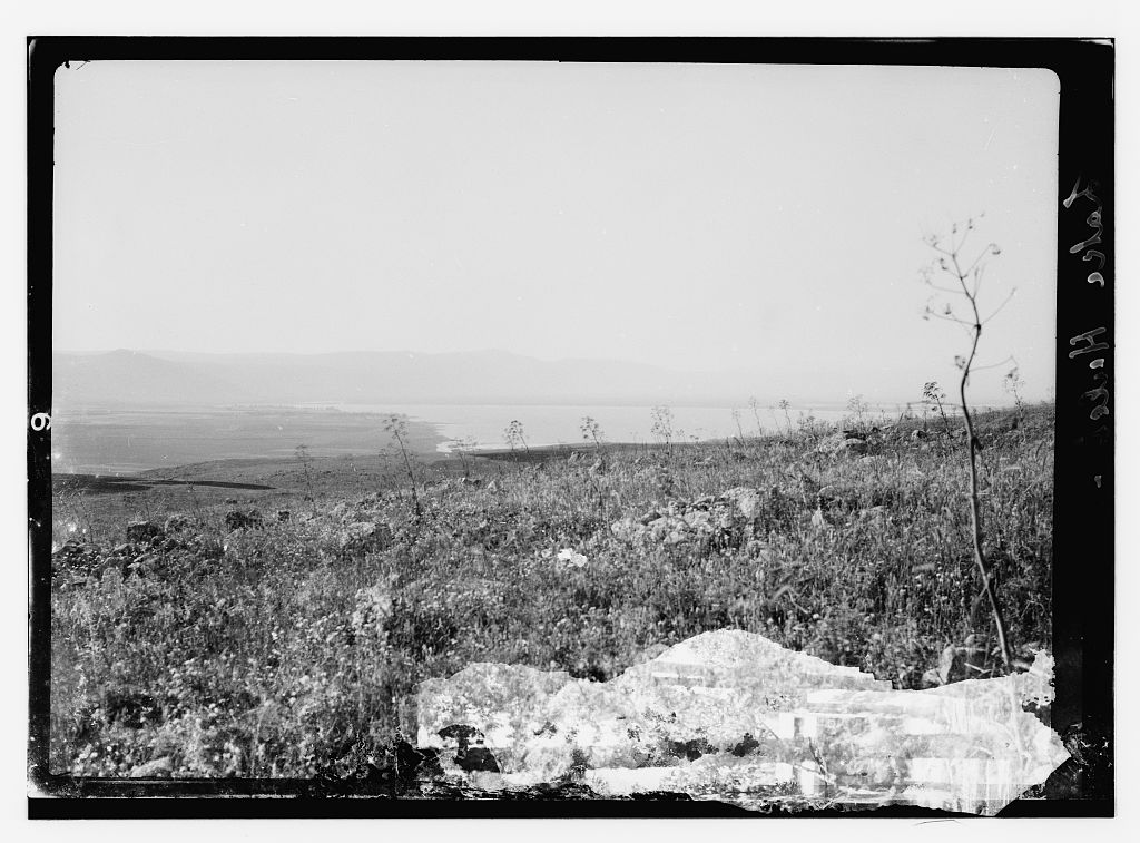 Lake Hula - Drained - بحيرة الحوله-مجففه : General view, Matson Collection