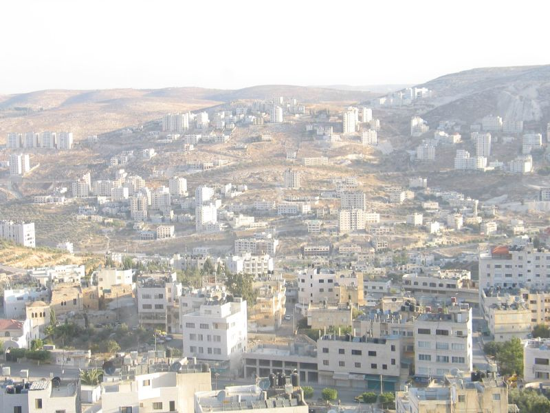Nablus - نابلس : The upper half of this picture is for Eibal mountain the Northern Mountain. The lower half is Rafidia neighborhood which states in the west side of Nablus.