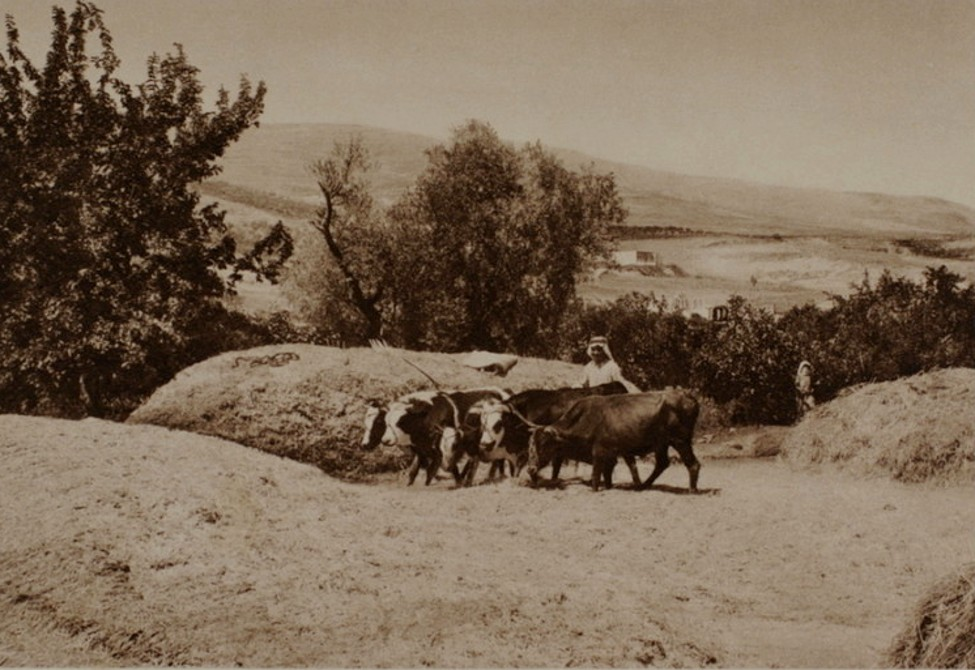 Nablus - نابلس : NABLUS - Late 19th, early 20th c. 4 (1927)