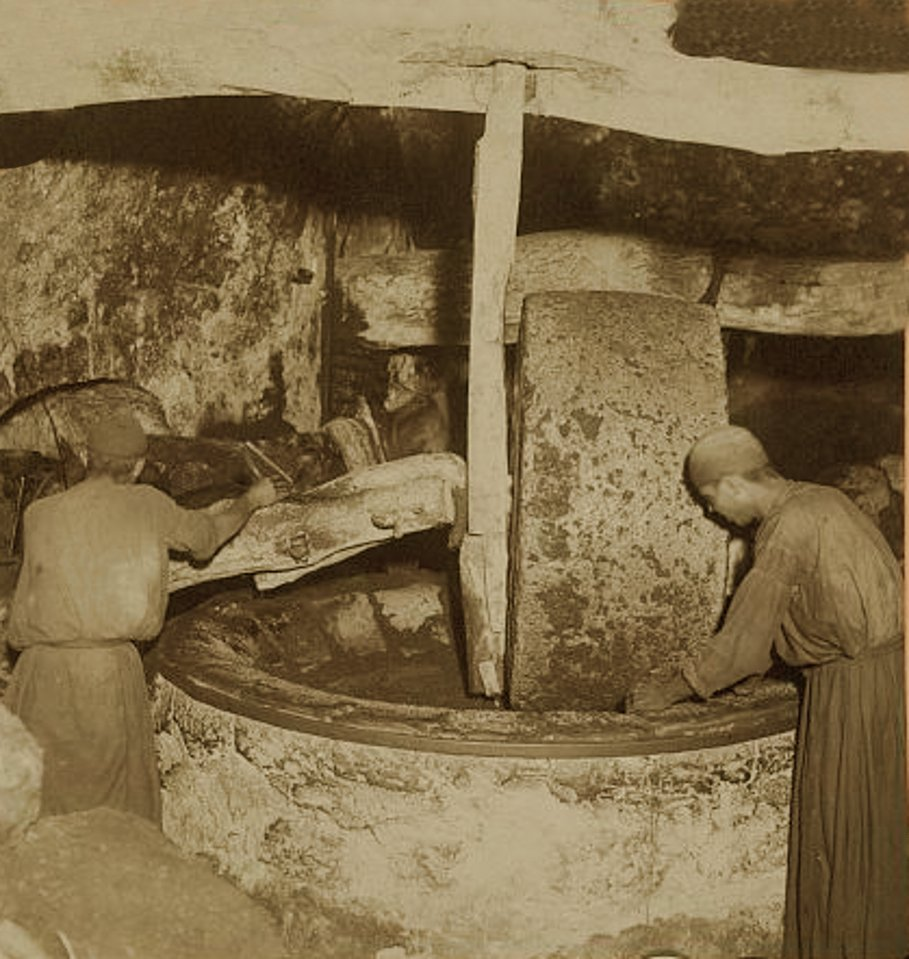 NABLUS - Late 19th, early 20th c. 49 - Crushing oil from the olive, 1903