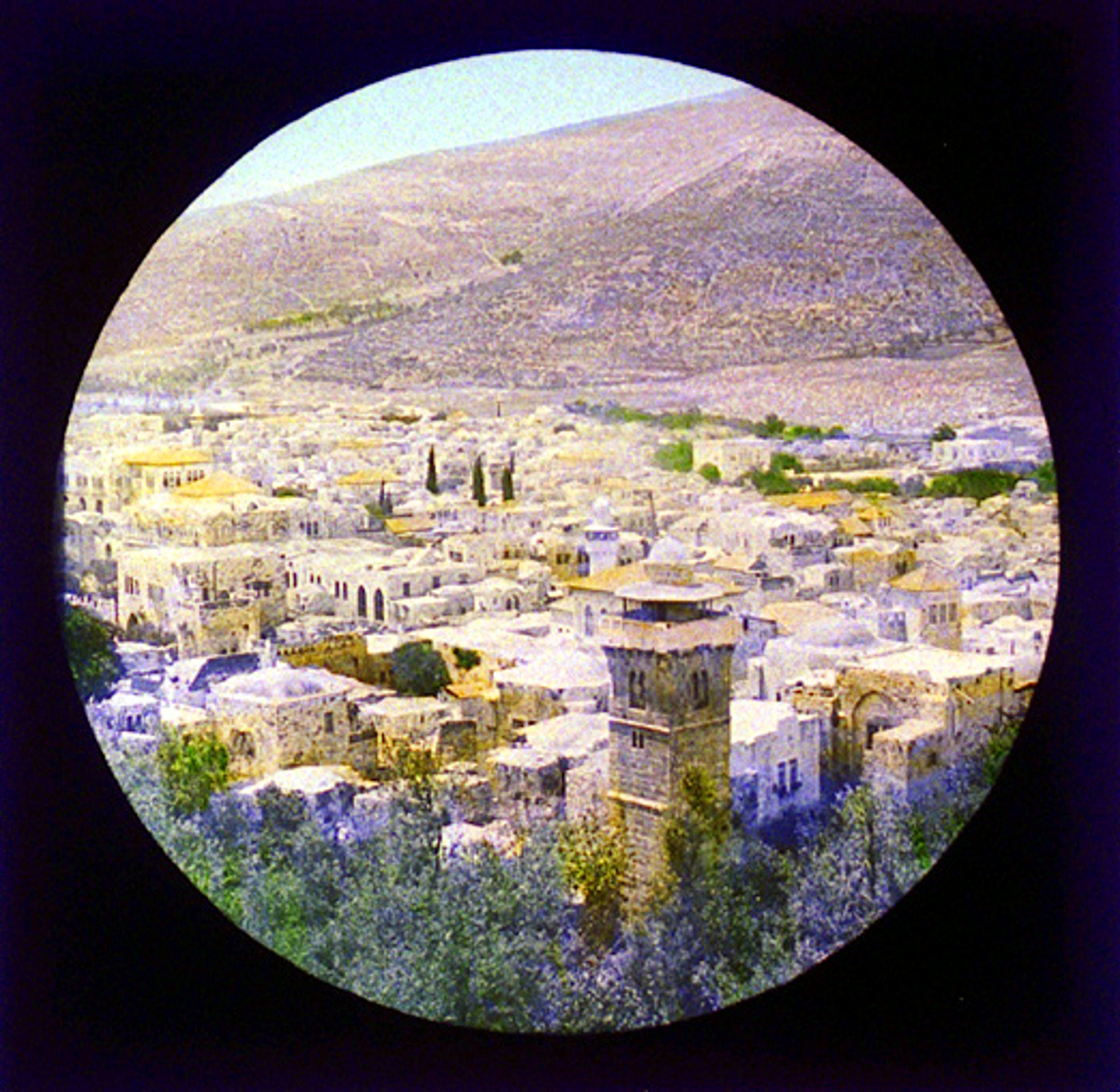 Nablus - نابلس : NABLUS - Late 19th, early 20th c. 53 - General view of The Queen of Palestine - NABLUS
