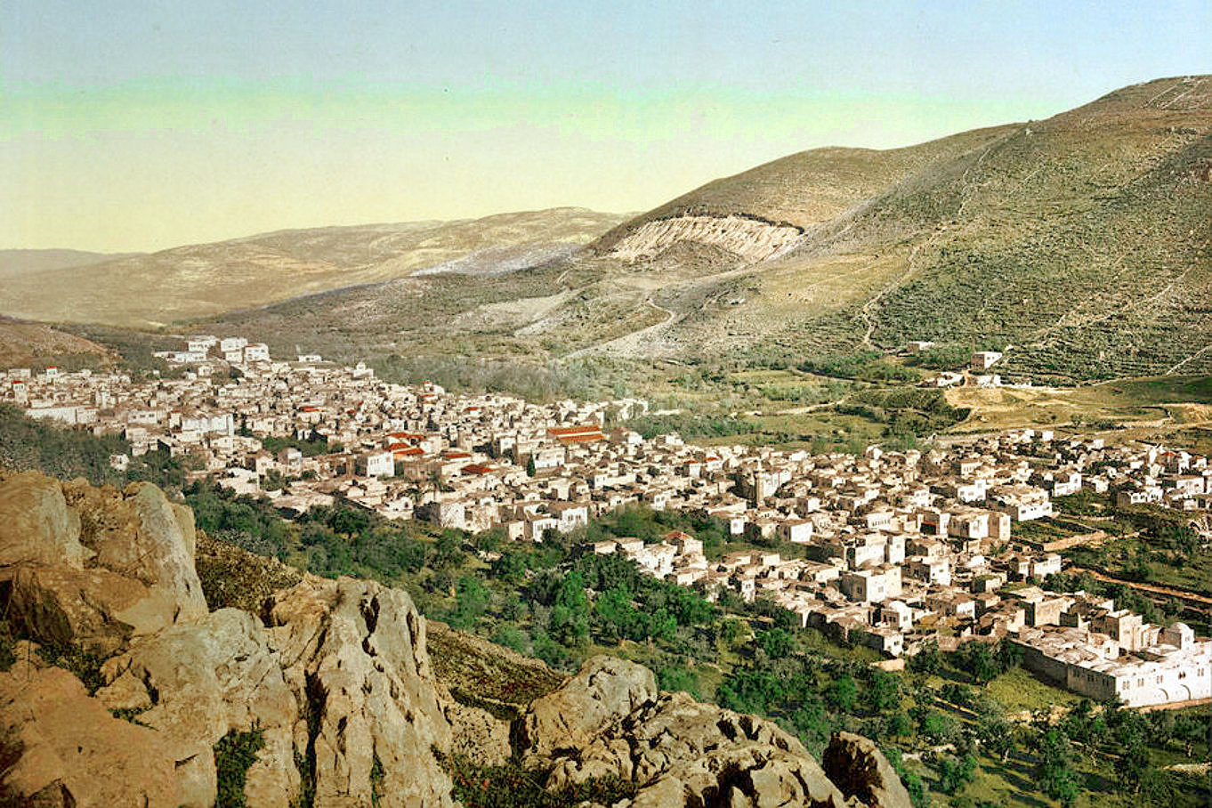 Nablus - نابلس : NABLUS - Late 19th, early 20th c. 66 - The glory and beauty of