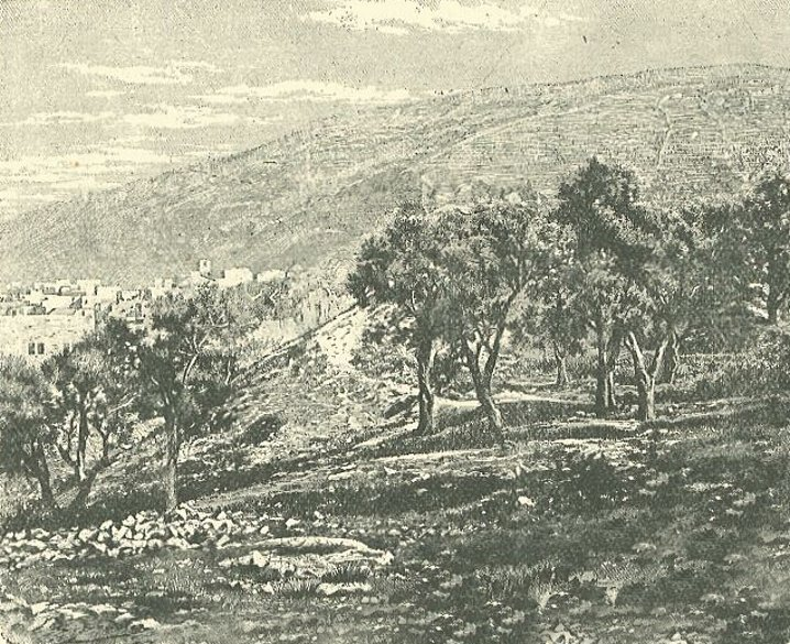 Nablus - نابلس : NABLUS - Engravings,etc 23 - The edge of Nablus and Mount Gerzim, circa 1880s