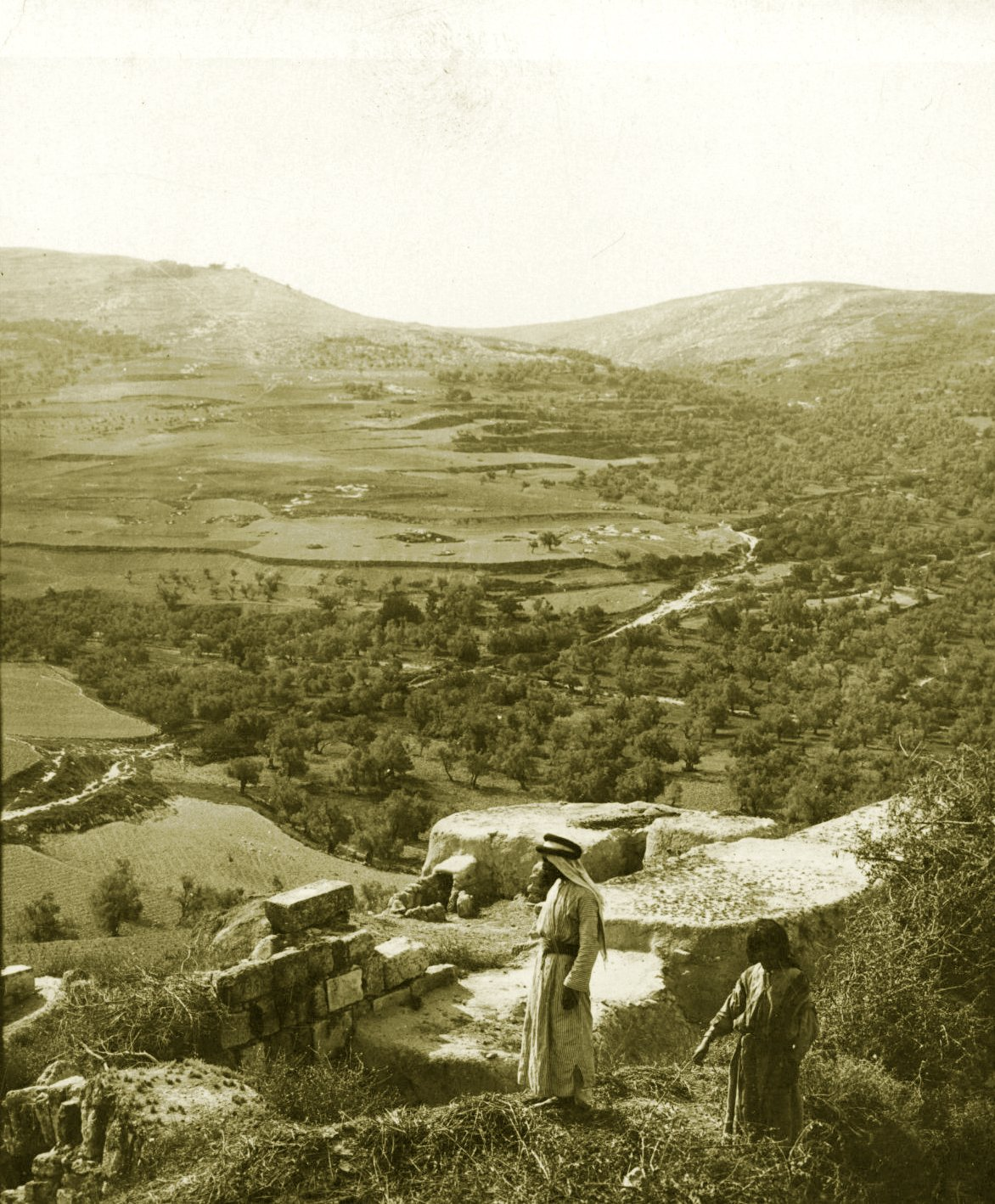 Nablus - نابلس : NABLUS - Late 19th, early 20th c. 115 - Looking south-east towards Nablus, circa 1900 (Underwood &Underwood) (Per Reem Ackall)