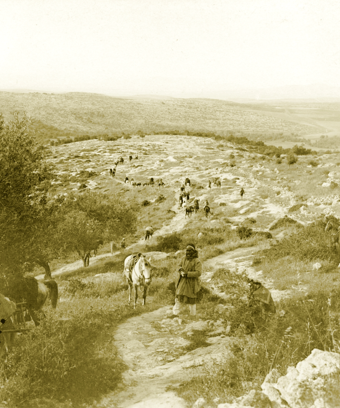 Nablus - نابلس : NABLUS - Late 19th, early 20th c. 117 - Arab shephards and horsemen on mountain track leading to Jenin from northern environs of Nablus