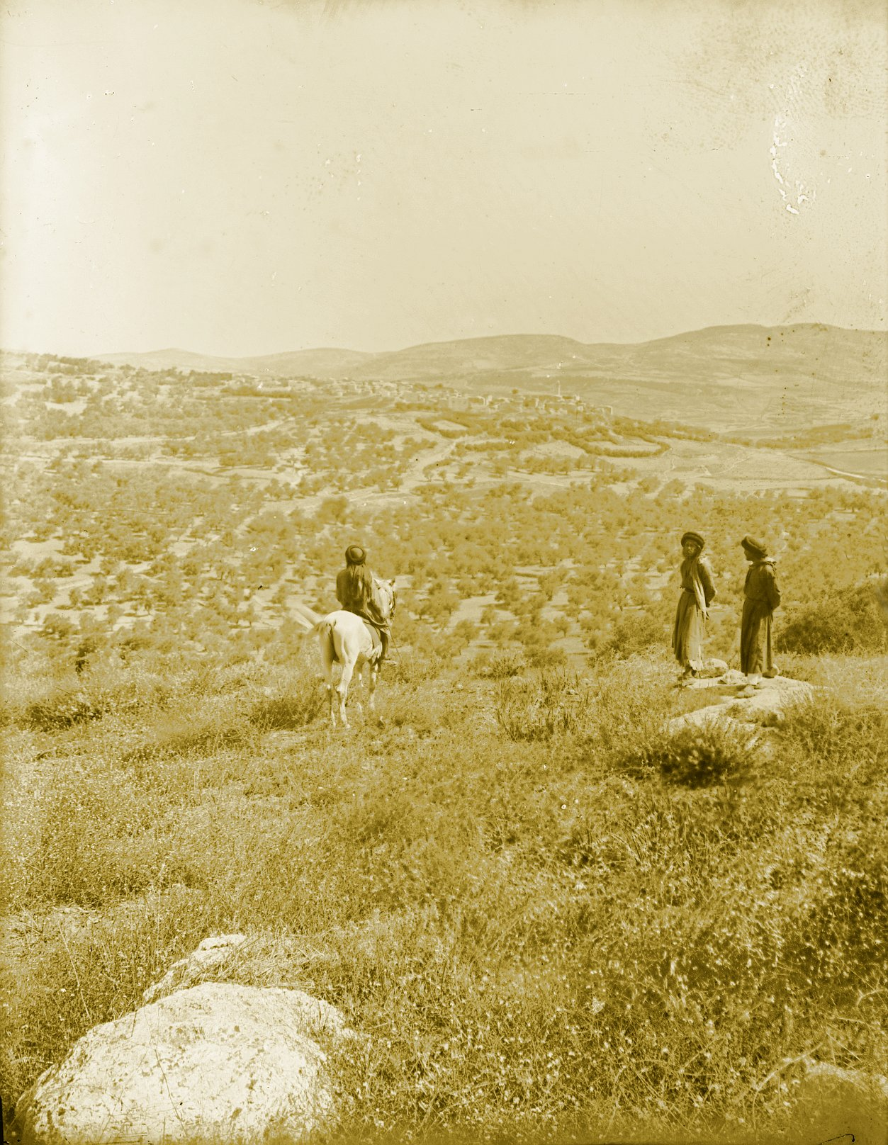 Nablus - نابلس : NABLUS - Late 19th, early 20th c. 124 - In the hills N.W. of Nablus