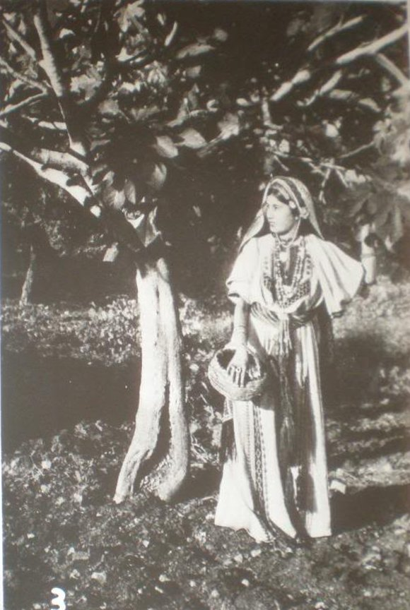 Ramallah - رام الله : Ramallah woman dressed in traditional Thobe under a fig tree, 1920s